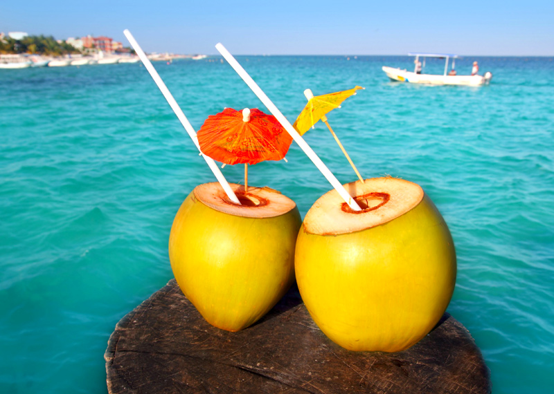 Nothing Is Better Than The Natural Coconut Drink