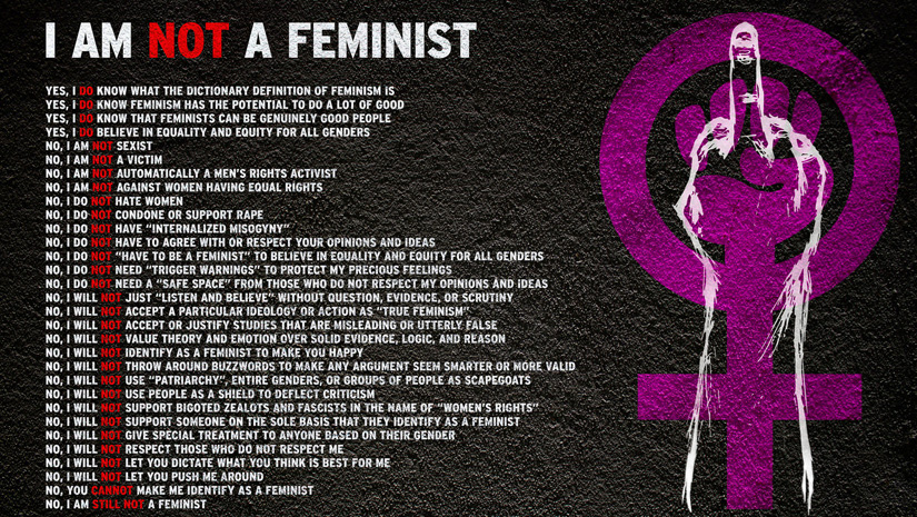 True Definition Of Feminism