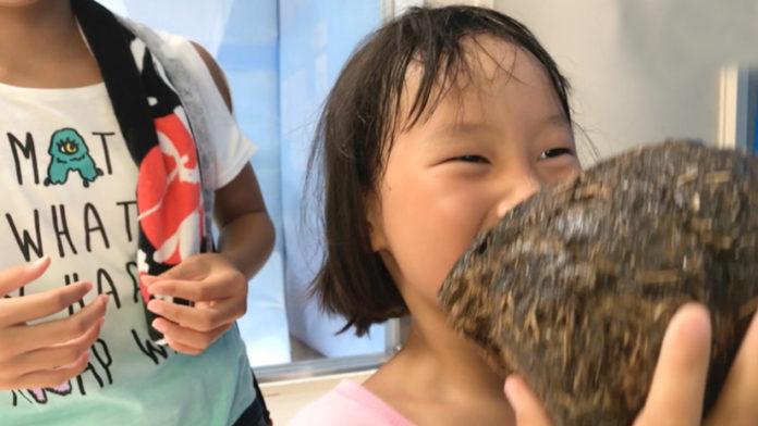 WTF!! Japan Animal Keepers Arranges Poop Exhibition