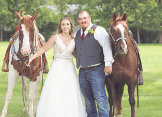 Horse-Smiling-At-Wedding